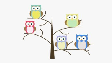 Adjectives Descriptive Rules