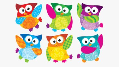 Conditionals English Grammar