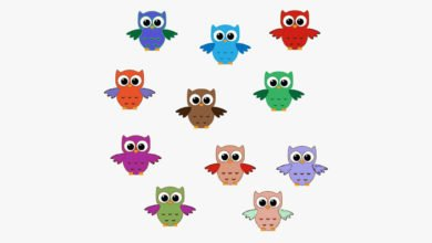 Conjunctions English Grammar