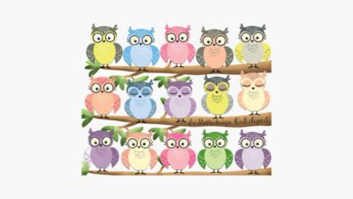 English Object and subject Pronouns