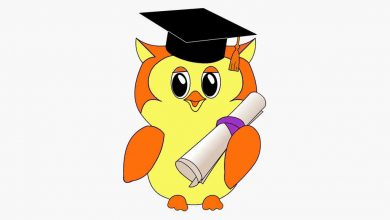 English articles quiz