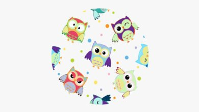 Modals English grammar